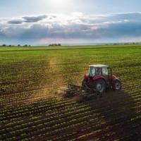 L'Inghilterra ripensa i carburanti a impatto zero: olio da cucina e rifiuti per alimentare aerei e navi