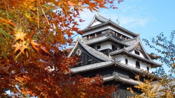 Pensare ai colori  dell'autunno  giapponese