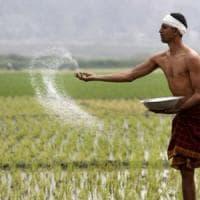 India,  nel 2016 si sono suicidati 11.400 contadini soffocati dai debiti