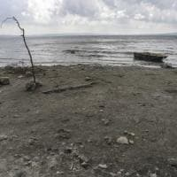 """Allarme siccità, Pietro Laureano: """"Il rimedio è consumare meno acqua a partire dalle..."""