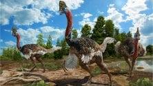 Il dinosauro con la cresta: la specie scoperta in Cina