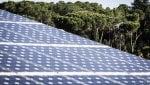 Terna, nuovo record per le rinnovabili: oltre l'87% del totale