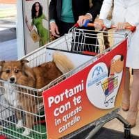 La battaglia per i cani al supermercato, a Padova il primo divieto