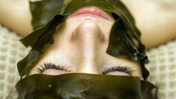 Alghe & co. la bellezza viene dal mare
