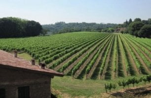 """""""Prima viticoltori, poi produttori"""": il Franciacorta secondo Biondelli"""