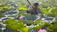 Terre sottratte  agli agricoltori a favore  della multinazionale Viettel: condannati  14 funzionari