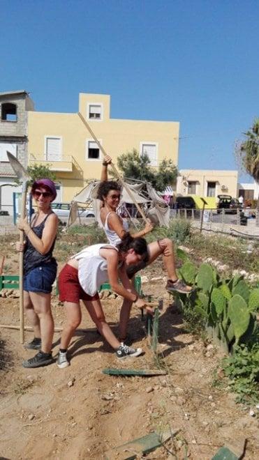 P'orto di Lampedusa: il progetto e le colture
