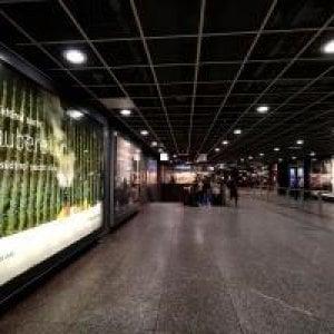 Da Monaco campagna contro l'Alto Adige: troppi pesticidi. Ira di Bolzano: li denunciamo