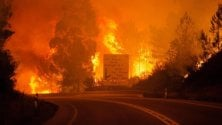 Rifugi antincendio  ideati dagli studenti   di ANNA MARIA DE LUCA