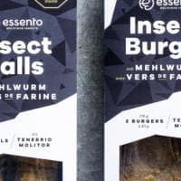 Svizzera, insetti da mangiare in arrivo nei supermercati Coop
