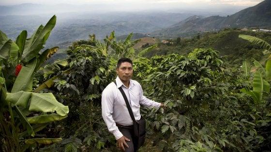 Dal kalashnikov al chicco. Viaggio in Colombia tra gli ex Farc che ora coltivano il caffè