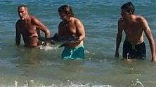 Spagna, cucciolo di delfino muore tra i bagnanti che si fanno i selfie