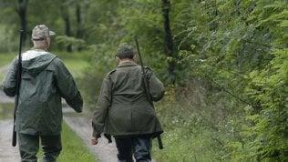 """""""Cacciatori quest'anno non sparate"""". L'appello delle associazioni animaliste:caldo e incendi, uccelli stremati"""