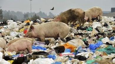 Il Kenya mette al bando  i sacchetti di plastica
