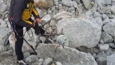 Identificati i resti di uno degli alpinisti ritrovati sul monte Bianco dopo il ritiro dei ghiacciai