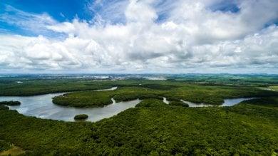 Brasile, stop al decreto a favore  delle miniere: l'Amazzonia è salva