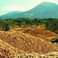 Il miracolo delle arance abbandonate in Costarica.