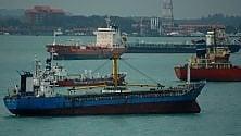 Usa. Limite di velocità per le navi: il rumore altera le comunicazioni delle orche