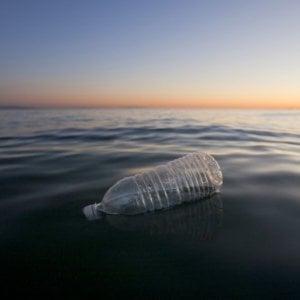 """""""Servono più studi per capire quali sono i rischi delle microplastiche nell'acqua"""""""