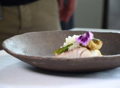 E con l'allevamento modello la lumaca siciliana fa concorrenza all'escargot