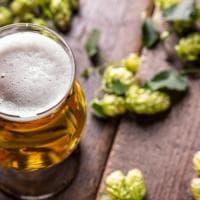 Ma la birra ha un terroir come il vino? Un legame tutto da scoprire attraverso 10 bottiglie