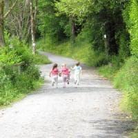 Bimbi meno asmatici se vivono vicino al parco