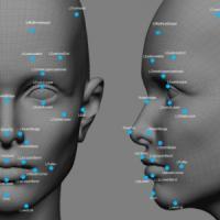 """Gay o etero, un algoritmo """"legge"""" l'orientamento sessuale sul volto. Il controverso..."""