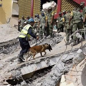 Sisma in Messico, Juan José Guerra: