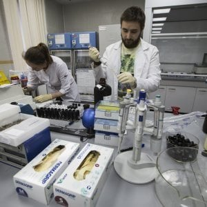 Doping: Wada assolve 95 su 96 atleti russi