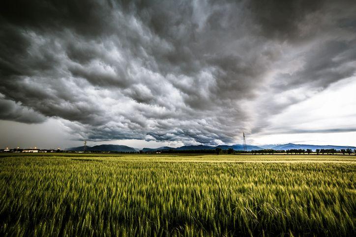 Assicurazioni agricole in forte calo
