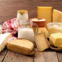 Fermenti, gluten free, lattosio, light: 7 cose che devi sapere sui formaggi