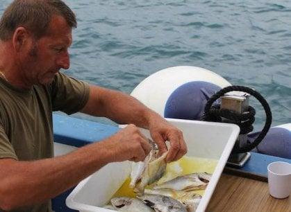 La battaglia del pescatore maremmano:
