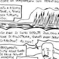 Intorno a Bracciano, il lago della storia svuotato dall'uomo