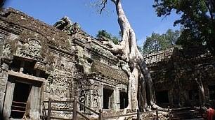 Cambogia. Nella giungla