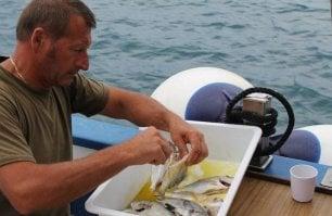 """La battaglia del pescatore maremmano: """"Con le reti a strascico devastano il mare"""""""