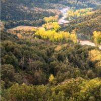 Le meraviglie di Monte Peglia, candidato a riserva Unesco
