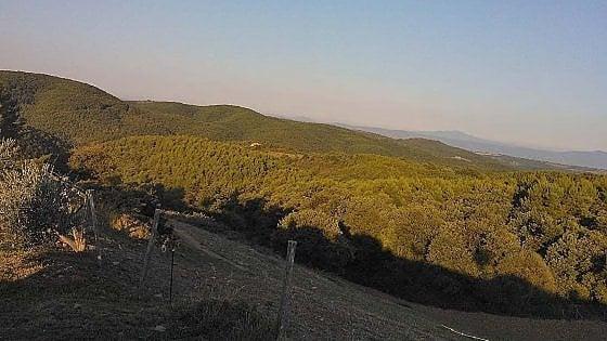Mab Unesco, l'Umbria candidata a riserva della biosfera con il Monte Peglia