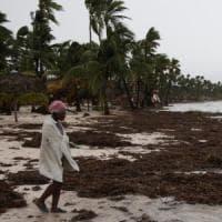 Uragano Maria, morti e dispersi a Porto Rico e in Dominica