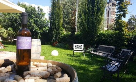 Al Foro dei Baroni la pizza parla di Sannio (con accento ucraino) e profuma di vino