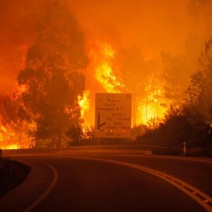 """Incendi Portogallo, bambini vogliono far causa a 47 paesi: """"Fermate il climate change"""""""