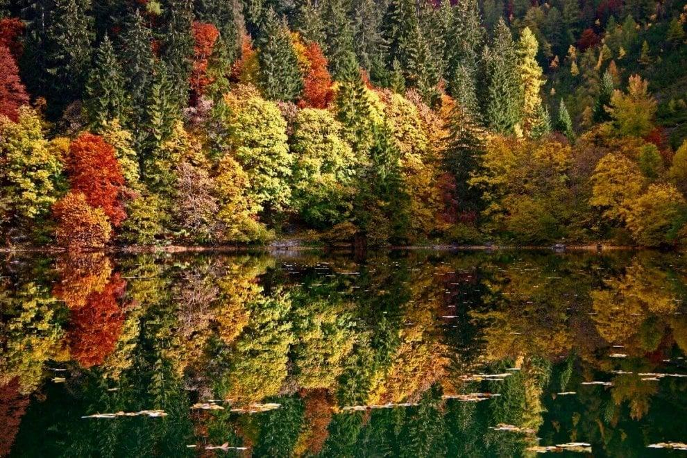 Dal Trentino al Pollino, foliage di casa nostra