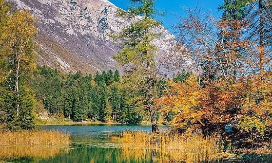Dal Trentino alla Calabria, a scoprire il foliage di casa nostra