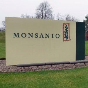 """Glifosato, famiglia francese fa causa a Monsanto. """"Ha provocato handicap di nostro figlio"""""""