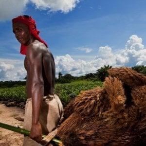 Congo, l'usurpazione delle terre in 106 anni di sfruttamento