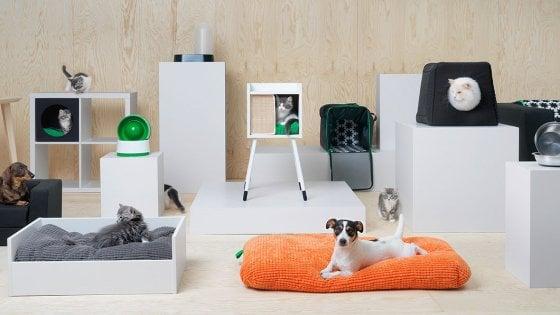 Ikea punta sugli animali: arriva la linea di prodotti per cani e gatti