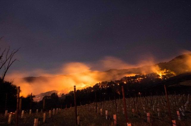 Napa e Sonoma Valley: il dramma delle cantine distrutte dall'incendio