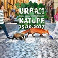 I consigli del Wwf per avere città ricche di biodiversità