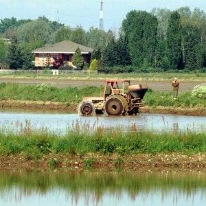 """Matteo Dell'Acqua, lo scienziato che impara dai contadini: """"Insieme creiamo i semi del futuro"""""""