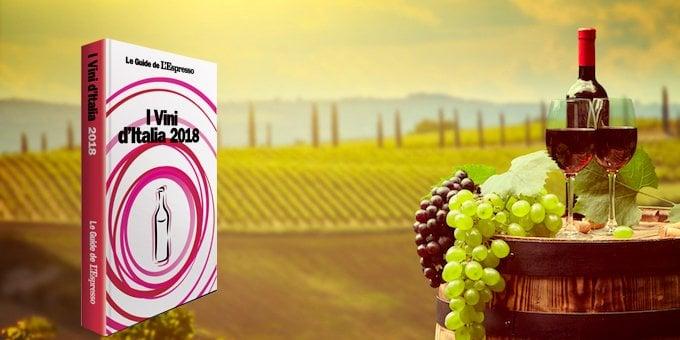 Guida per esperti e wine lover