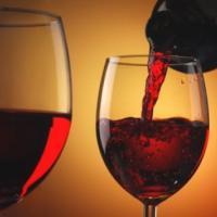 Ecco i migliori 20 vini